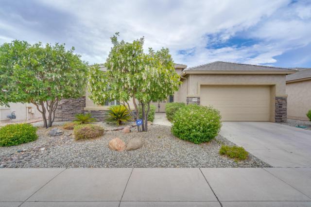 18322 N Linkletter Lane, Surprise, AZ 85374 (MLS #5791762) :: Desert Home Premier