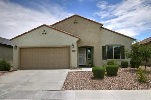 5397 W Victory Way, Florence, AZ 85132 (MLS #5791799) :: Riddle Realty