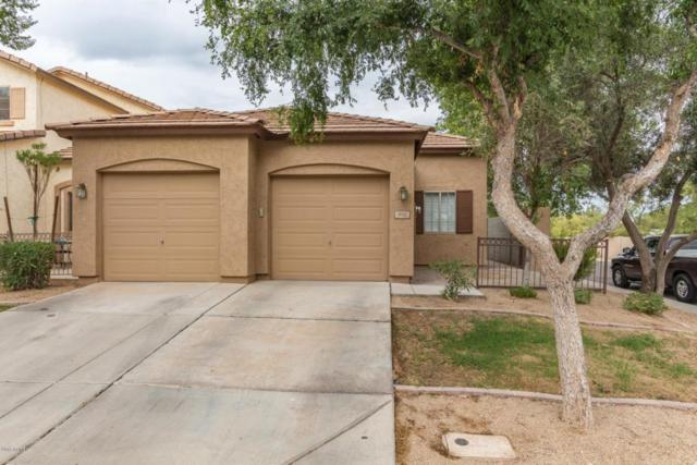 916 S Tucana Lane, Gilbert, AZ 85296 (MLS #5791820) :: Sibbach Team - Realty One Group