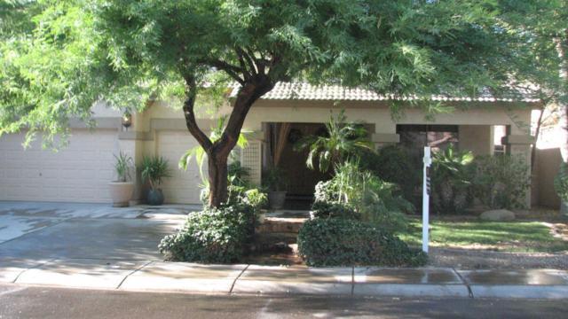 1700 E Redwood Place, Chandler, AZ 85286 (MLS #5791940) :: Yost Realty Group at RE/MAX Casa Grande