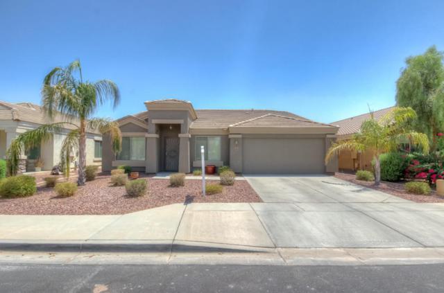 9583 W Frank Avenue, Peoria, AZ 85382 (MLS #5791941) :: RE/MAX Excalibur
