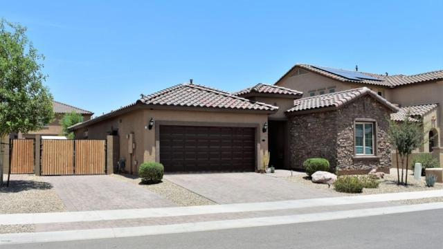 17714 W Hadley Street, Goodyear, AZ 85338 (MLS #5791944) :: Kortright Group - West USA Realty