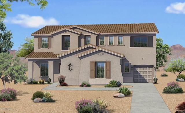 19461 S 194TH Way, Queen Creek, AZ 85142 (MLS #5791979) :: Team Wilson Real Estate
