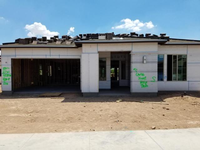 13219 W Domino Drive, Peoria, AZ 85383 (MLS #5791980) :: The Worth Group