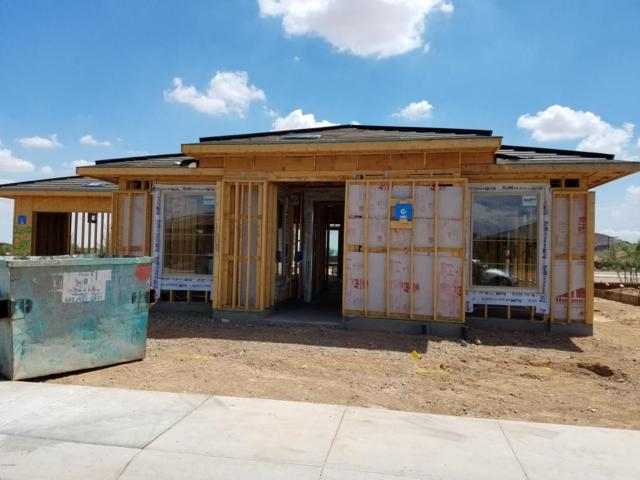 13231 W Hummingbird Terrace, Peoria, AZ 85383 (MLS #5792002) :: The Worth Group