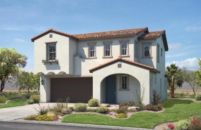 3712 E Earll Drive, Phoenix, AZ 85018 (MLS #5792020) :: Sibbach Team - Realty One Group