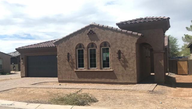 11050 E Buckhorn Drive, Scottsdale, AZ 85262 (MLS #5792076) :: The W Group