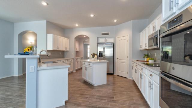 17794 W Holly Drive, Surprise, AZ 85374 (MLS #5792122) :: Desert Home Premier