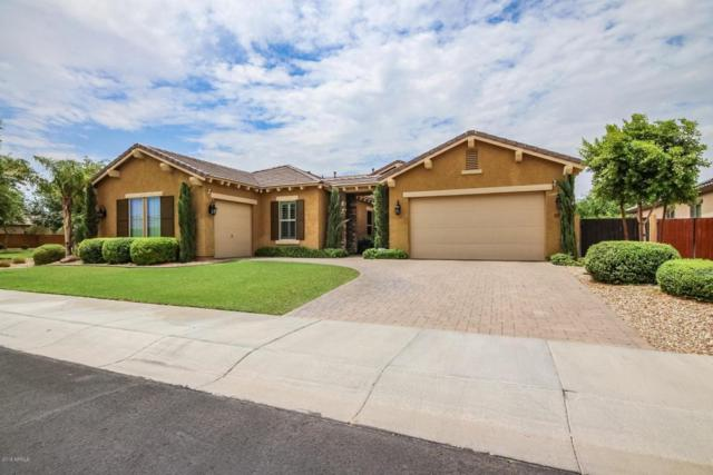 16032 W Vernon Avenue, Goodyear, AZ 85395 (MLS #5792203) :: Kortright Group - West USA Realty