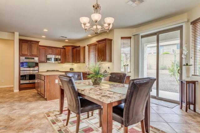 5218 W Pinnacle Vista Drive, Phoenix, AZ 85083 (MLS #5792303) :: REMAX Professionals