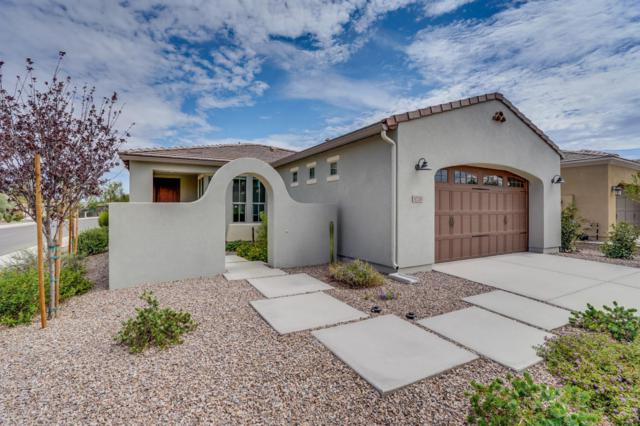 1720 E Elysian Pass, San Tan Valley, AZ 85140 (MLS #5792399) :: Yost Realty Group at RE/MAX Casa Grande