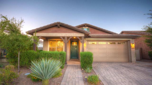 10249 E Sable Avenue, Mesa, AZ 85212 (MLS #5792407) :: Arizona 1 Real Estate Team