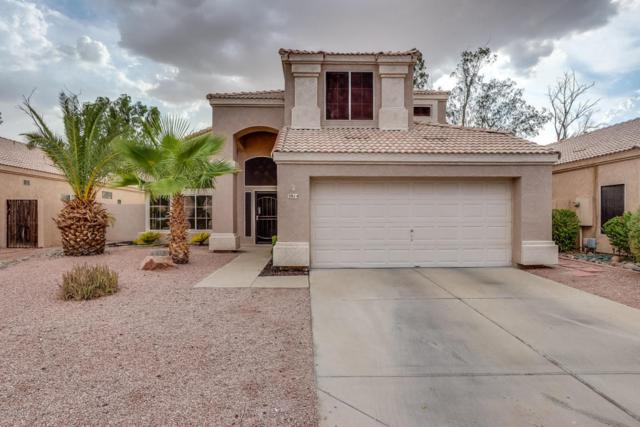 3914 N Copenhagen Drive, Avondale, AZ 85392 (MLS #5792419) :: The AZ Performance Realty Team