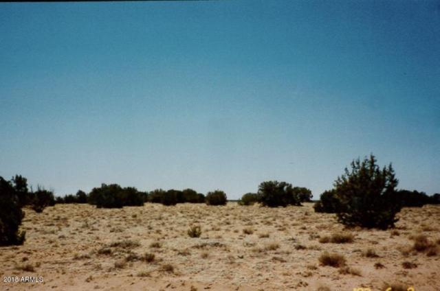 6020 River Run Drive, Winslow, AZ 86047 (MLS #5792453) :: Brett Tanner Home Selling Team
