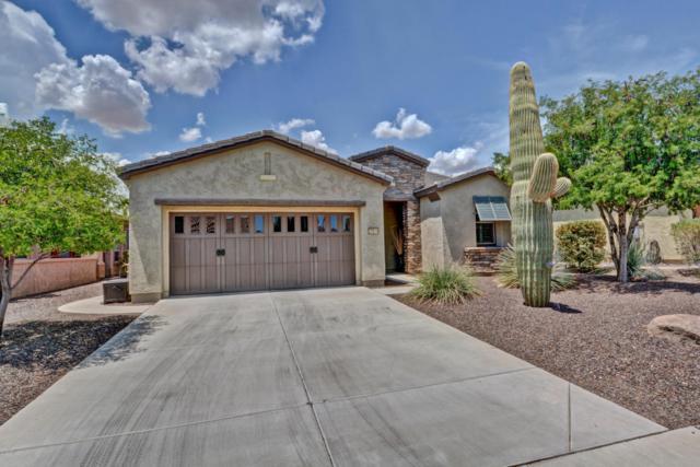 27614 N 129TH Lane, Peoria, AZ 85383 (MLS #5792461) :: The Worth Group