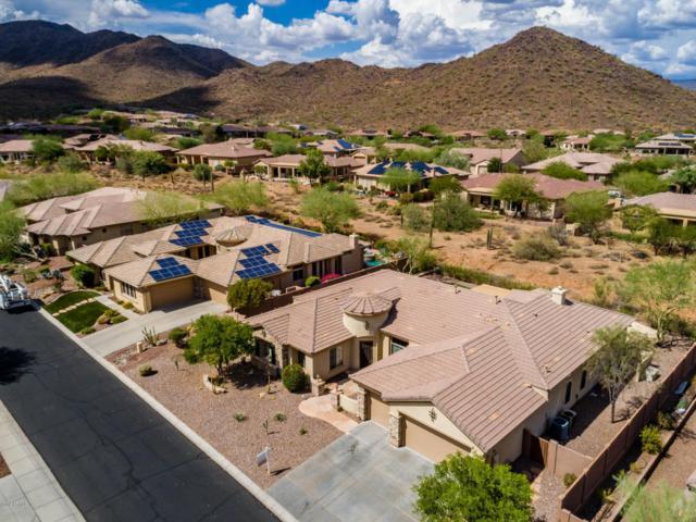 41709 N River Bend Road, Anthem, AZ 85086 (MLS #5792475) :: The Wehner Group