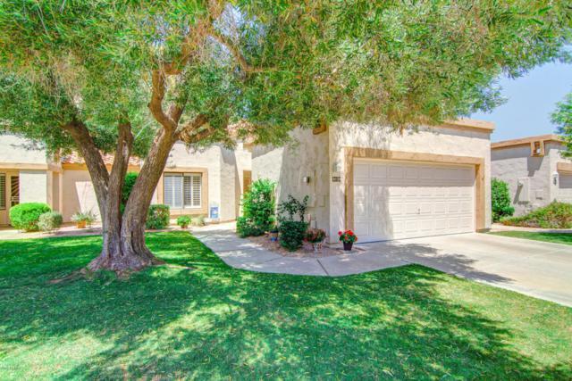 9128 W Kimberly Way, Peoria, AZ 85382 (MLS #5792671) :: Desert Home Premier