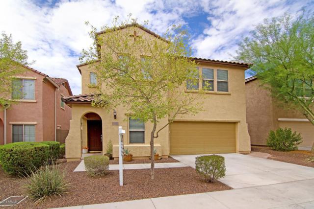 5435 W Hobby Horse Drive, Phoenix, AZ 85083 (MLS #5792825) :: REMAX Professionals