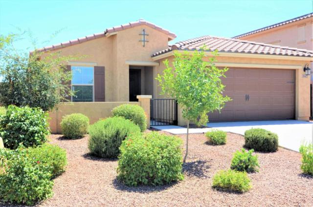 18427 W Southgate Avenue, Goodyear, AZ 85338 (MLS #5792865) :: Kortright Group - West USA Realty