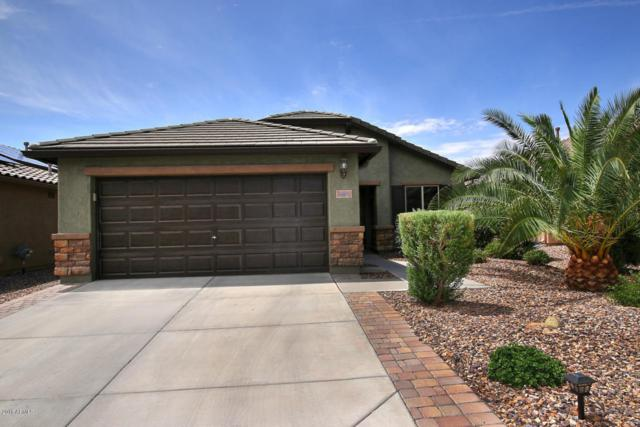 7981 W Sonoma Way, Florence, AZ 85132 (MLS #5792886) :: Riddle Realty