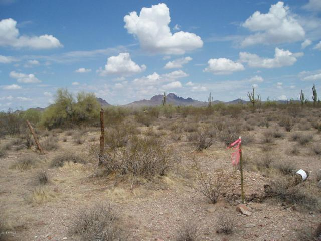 31198 W Tamar Road, Unincorporated County, AZ 85361 (MLS #5792952) :: Brett Tanner Home Selling Team
