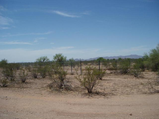 31902 W Radford Road, Unincorporated County, AZ 85361 (MLS #5792953) :: Brett Tanner Home Selling Team