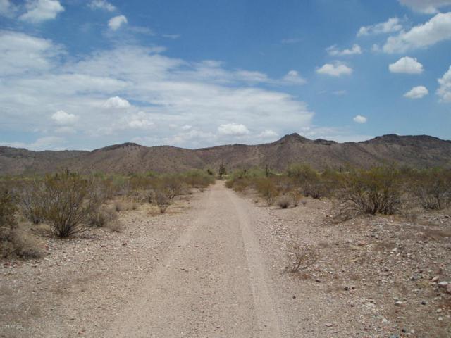 32401 W Restin Road, Unincorporated County, AZ 85390 (MLS #5792956) :: Brett Tanner Home Selling Team