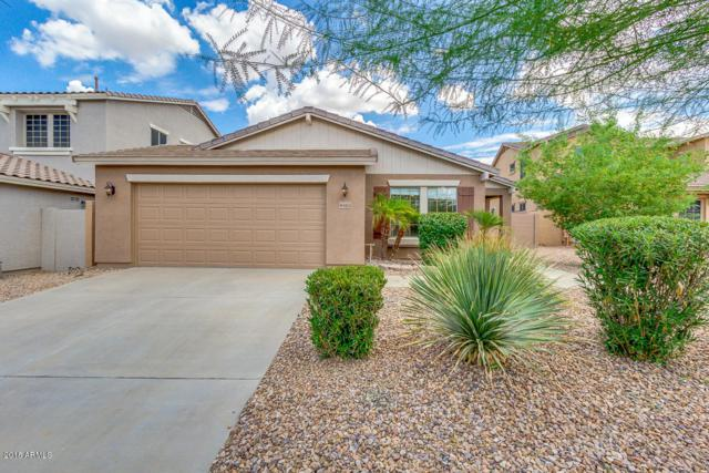 4465 S Lariat Court, Gilbert, AZ 85297 (MLS #5792975) :: The Jesse Herfel Real Estate Group