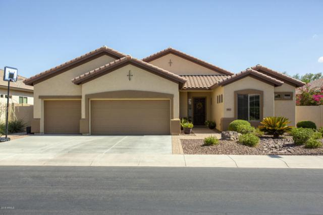 3413 E Isaiah Avenue, Gilbert, AZ 85298 (MLS #5793005) :: The Jesse Herfel Real Estate Group