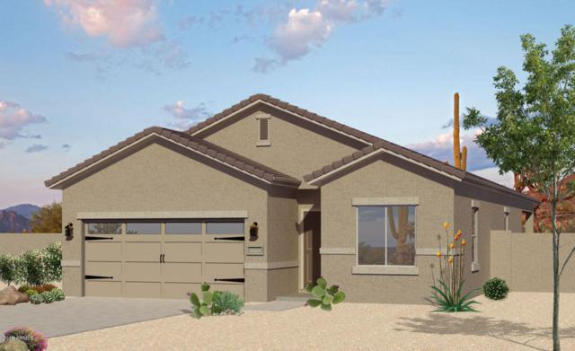 8594 S 253RD Avenue, Buckeye, AZ 85326 (MLS #5793020) :: Phoenix Property Group