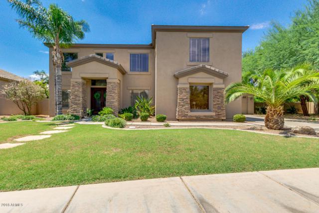 1087 E Tulsa Court, Gilbert, AZ 85295 (MLS #5793104) :: Arizona Best Real Estate