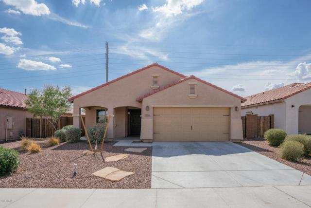3718 S 186TH Lane, Goodyear, AZ 85338 (MLS #5793162) :: Kortright Group - West USA Realty