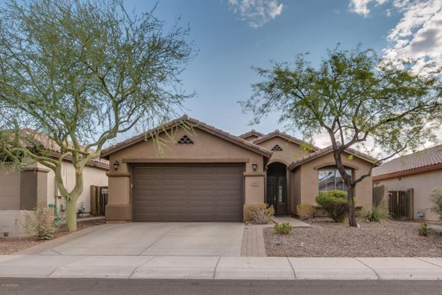 3306 W King Drive, Anthem, AZ 85086 (MLS #5793251) :: Riddle Realty