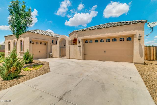 22822 S 221ST Place, Queen Creek, AZ 85142 (MLS #5793358) :: Revelation Real Estate