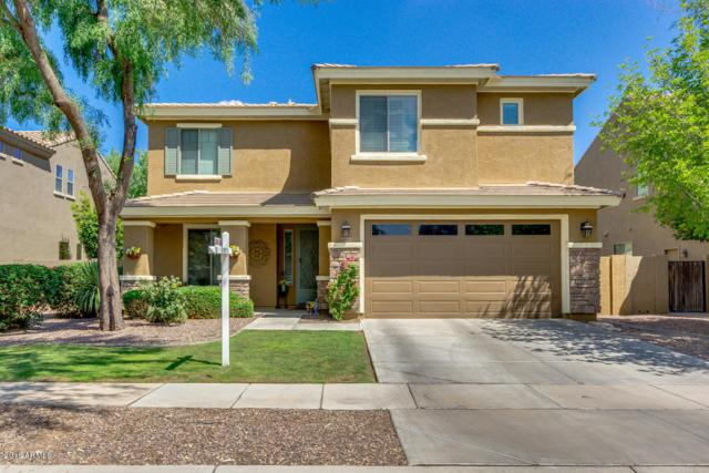 4480 E Maplewood Street, Gilbert, AZ 85297 (MLS #5793407) :: The Jesse Herfel Real Estate Group