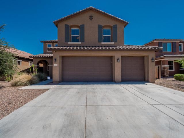 12001 W Chase Lane, Avondale, AZ 85323 (MLS #5793418) :: Kortright Group - West USA Realty
