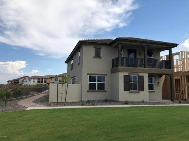 12252 W Cactus Blossom Trail, Peoria, AZ 85383 (MLS #5793434) :: The Worth Group