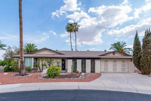 21002 N Palm Desert Drive, Sun City West, AZ 85375 (MLS #5793491) :: Keller Williams Realty Phoenix
