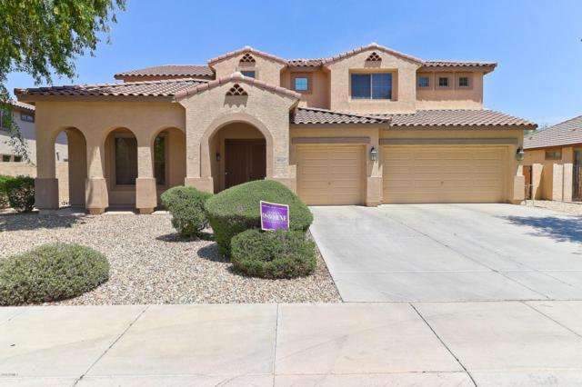 15242 W Elm Street, Goodyear, AZ 85395 (MLS #5793606) :: The Sweet Group