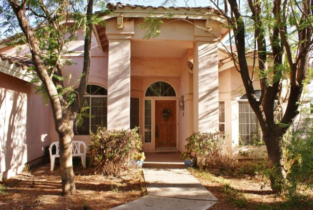 1831 E Lexington Avenue, Gilbert, AZ 85234 (MLS #5793623) :: The Wehner Group