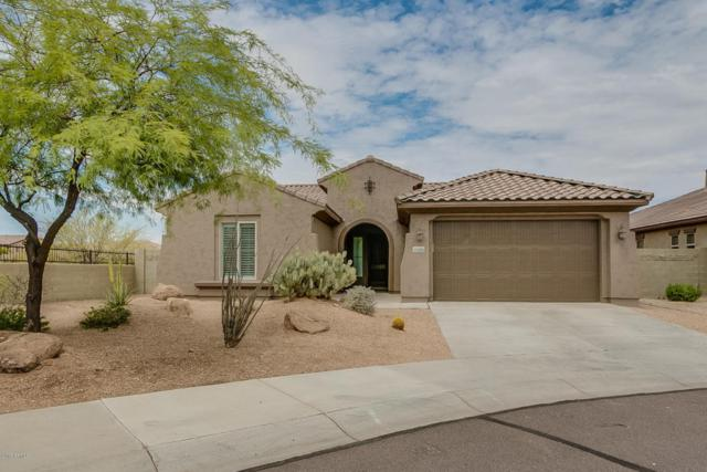 26896 N 90TH Lane, Peoria, AZ 85383 (MLS #5793628) :: The Everest Team at My Home Group