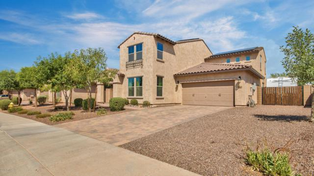 18240 W Montecito Avenue, Goodyear, AZ 85395 (MLS #5793635) :: Santizo Realty Group