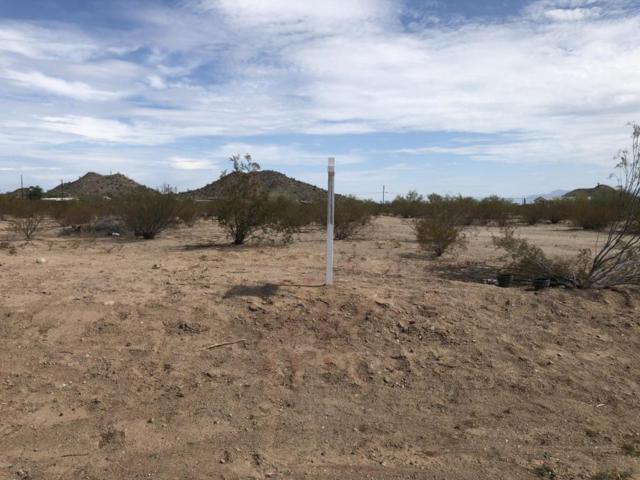 2556 W Judd Road W, Queen Creek, AZ 85142 (MLS #5793649) :: Keller Williams Legacy One Realty