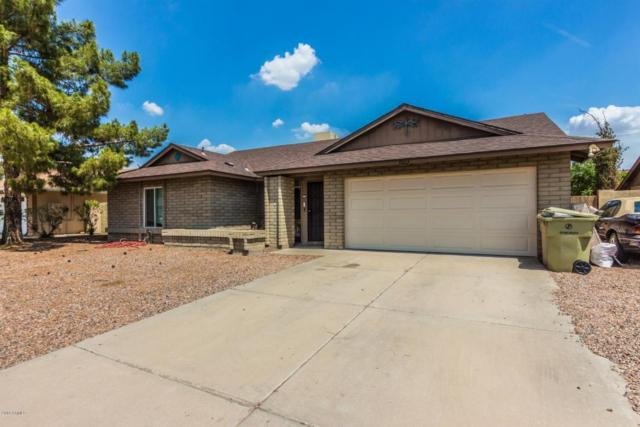 10213 N 65TH Avenue, Glendale, AZ 85302 (MLS #5793664) :: Conway Real Estate