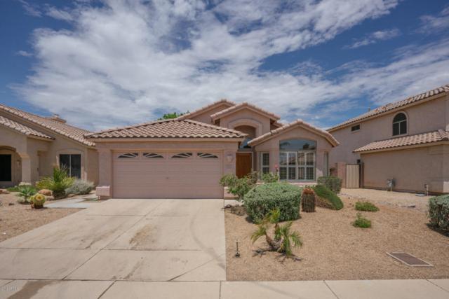 6626 W Monona Drive, Glendale, AZ 85308 (MLS #5793669) :: Conway Real Estate