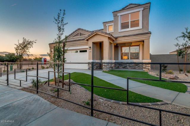 42204 W Noreen Road, Maricopa, AZ 85138 (MLS #5793675) :: Keller Williams Legacy One Realty
