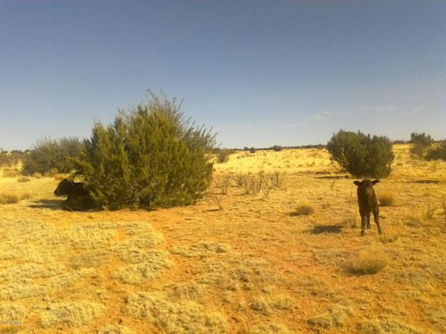 Lot 311 Hyde Park Road, Seligman, AZ 86337 (MLS #5793676) :: The Garcia Group @ My Home Group