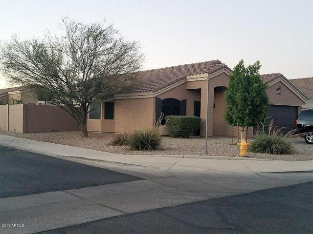 16274 W Superior Avenue, Goodyear, AZ 85338 (MLS #5793725) :: Santizo Realty Group