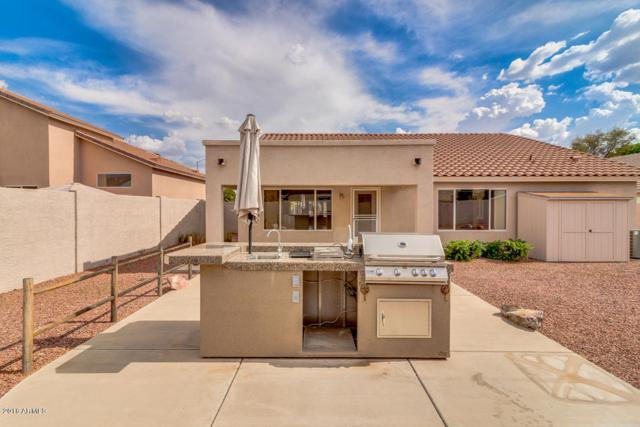 5674 E Harmony Avenue, Mesa, AZ 85206 (MLS #5793749) :: The Everest Team at My Home Group