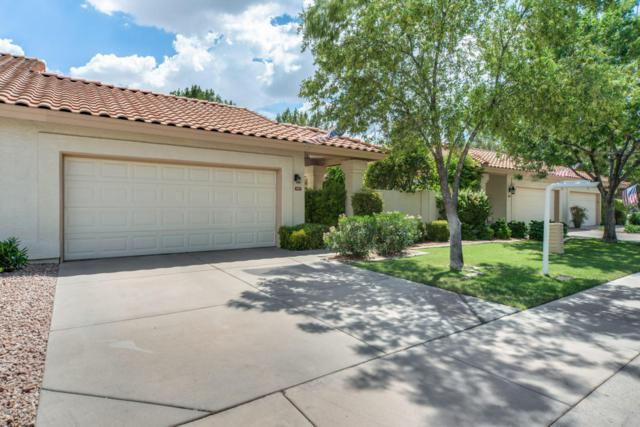 989 E Todd Drive, Tempe, AZ 85283 (MLS #5793751) :: Conway Real Estate